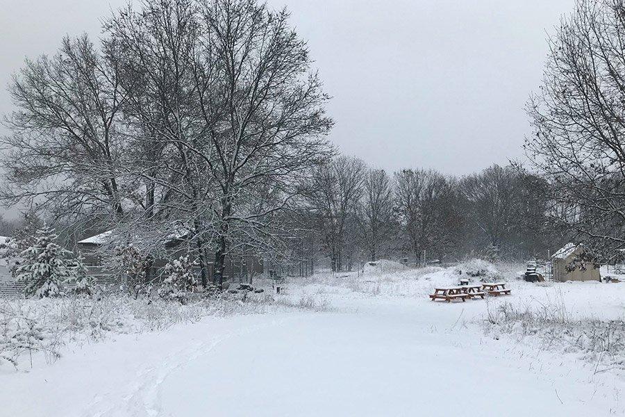 Sanctuary in Winter
